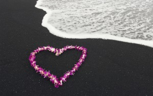 sea_heart_nature_landscape_flowers_love_romance_54126_300x188