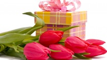 tulips_flowers_bouquets_gift_bow_31328_210x118